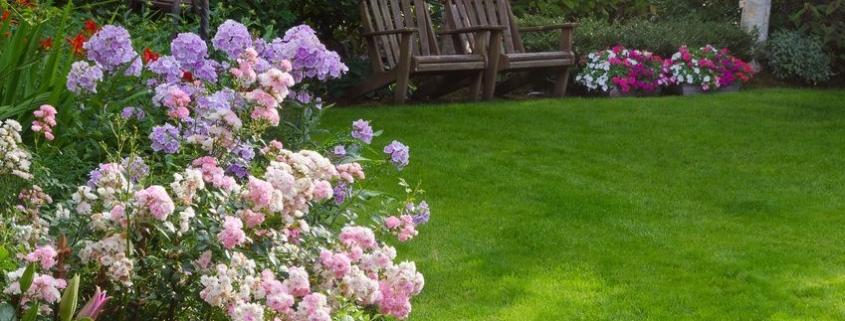 jardin en verano