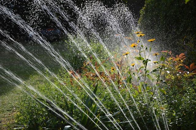 tipos de riego jardines